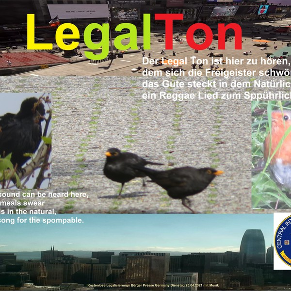 Legal Ton Upload Your Music Free