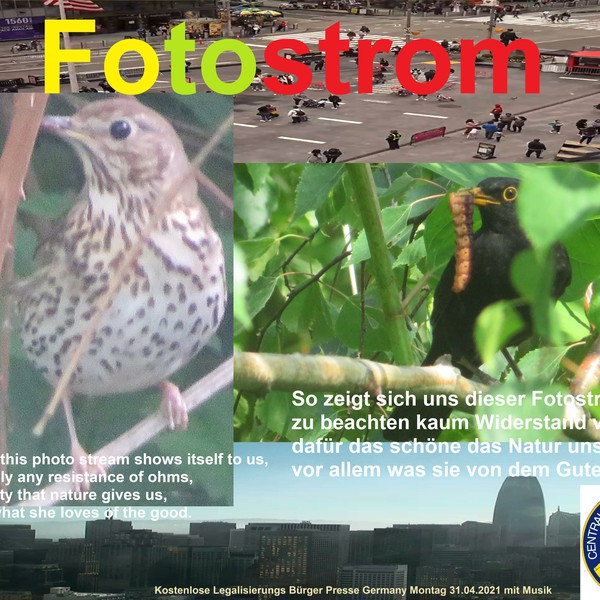 Fotostrom Upload Your Music Free