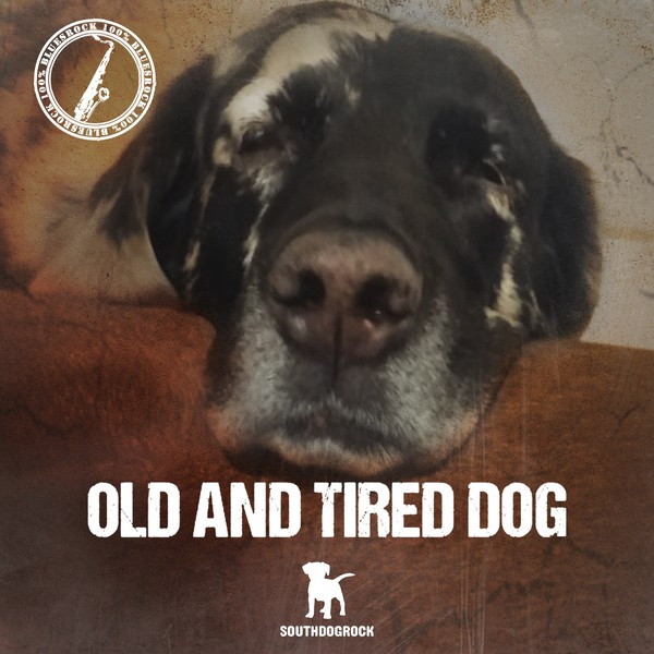 Old and tired dog Upload Your Music Free