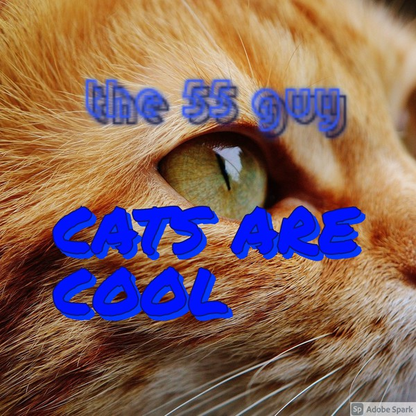 cats are cool Upload Your Music Free