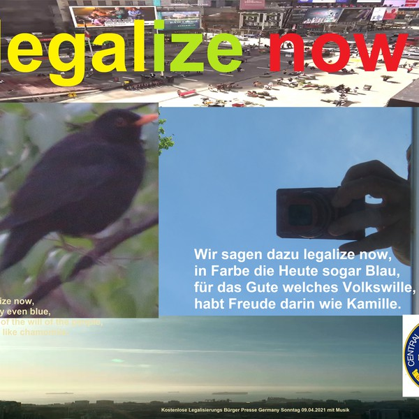 legalize now Upload Your Music Free