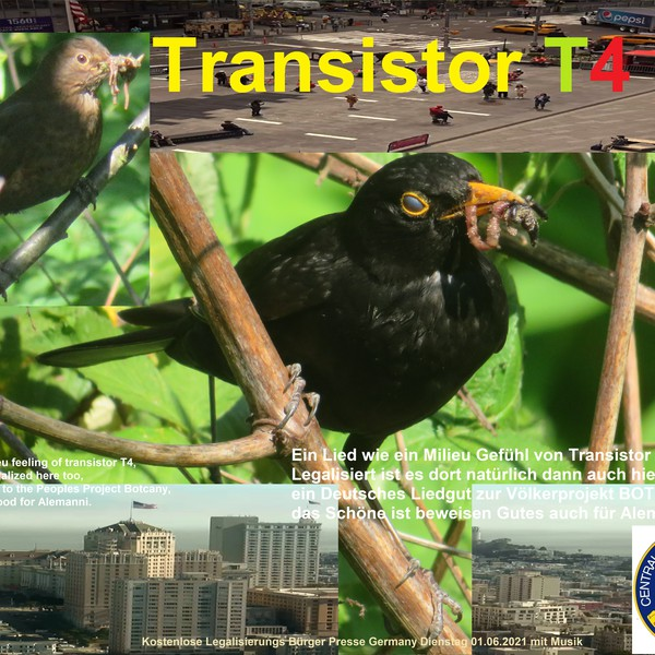 Transistor T4 Upload Your Music Free