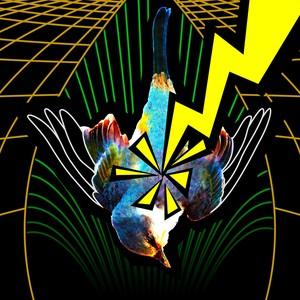 VOIDZ brazil Upload Your Music Free
