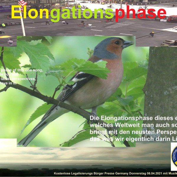 Elongationsphas Upload Your Music Free