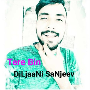Tere Bin Upload Your Music Free