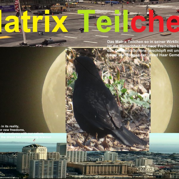 Matrix Teilchen Upload Your Music Free