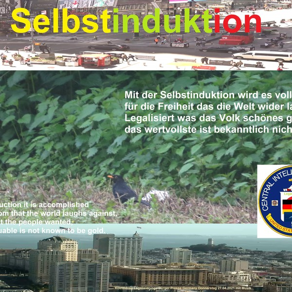 Selbstinduktion Upload Your Music Free
